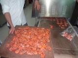 大虾微波干燥杀菌设备