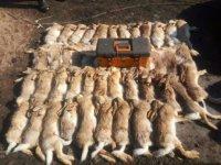 野兔捕猎机客户成功案例