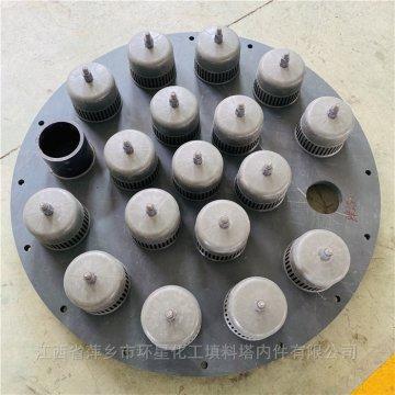 CPVC材質塑料泡罩塔板帶降液管受液盤