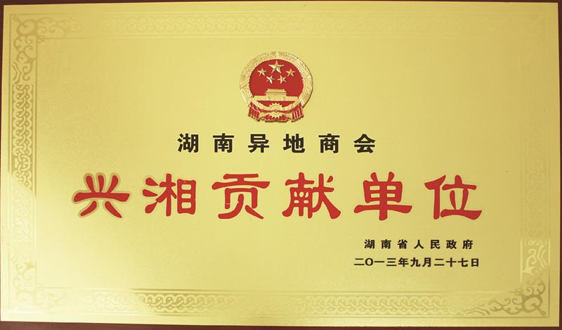 興湘貢獻獎(2013)